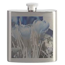 Crocus in infrared sunlight Flask