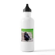 Little Kong Water Bottle