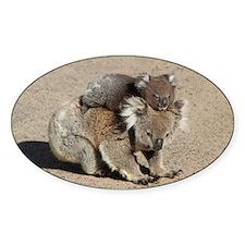Baby Joey Koala Piggyback Ride Decal