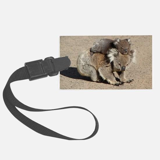 Baby Joey Koala Piggyback Ride Luggage Tag