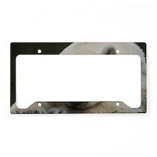 Polar bear 011 License Plate Holder