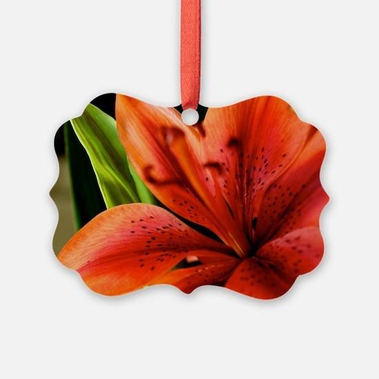 Spring Orange Lilly  Ornament