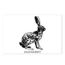 Jackrabbit (illustration) Postcards (Package of 8)