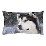 Alaska Pillow Cases
