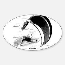 Kitesurf (Light) Decal