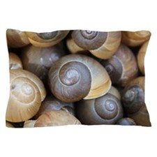 Snail Pillow Case