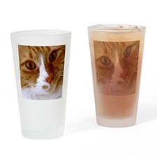 Cute Cat Face Drinking Glass
