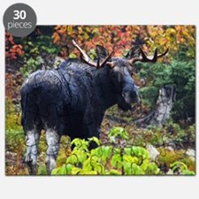 Bull from fight 2 Puzzle
