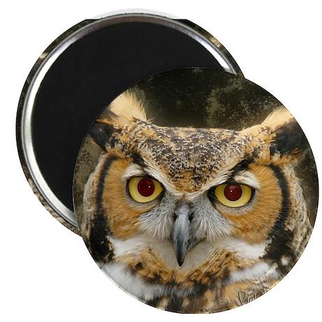 Big Ol' Hooty Owl Magnet