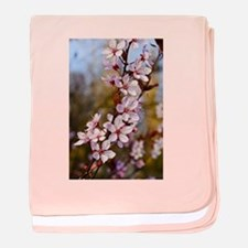 Almond Blossoms in Spring baby blanket