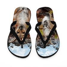 Kangaroo Flip Flops