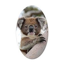Precious Baby Koala in Eucal Wall Decal Sticker