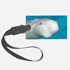 Beluga Whale (Delphinapterus leu Luggage Tag