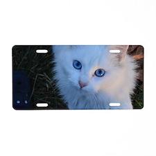 Blue Eyes Aluminum License Plate