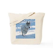 apolo3 Tote Bag