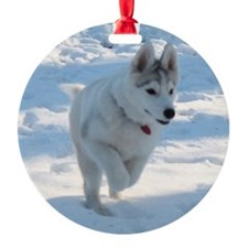 apolo3 Ornament