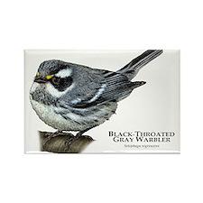 Black-Throated Gray Warbler Rectangle Magnet