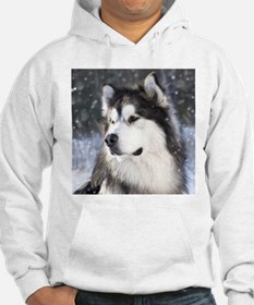 Call of the Wild Hoodie