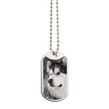 Call of the Wild Dog Tags