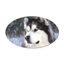 Call of the Wild Oval Car Magnet