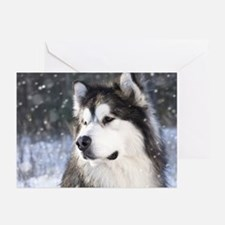 Call of the Wild Greeting Cards (Pk of 20)