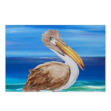 Brown Pelican Postcards (Package of 8)