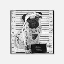 "Pug Shot ""The Pug Life"" Square Sticker 3"" x 3"""