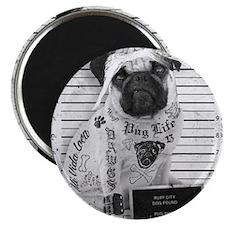 """Pug Shot """"The Pug Life"""" Magnet"""