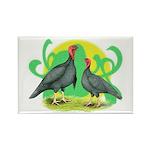 Blue Slate Turkeys2 Rectangle Magnet (100 pack)