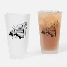 Snapping turtle Drinking Glass