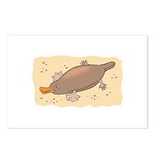 Cute Lil' Platypus Postcards (Package of 8)