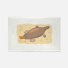 Cute Lil' Platypus Rectangle Magnet