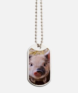 sweet little piglet 2 Dog Tags