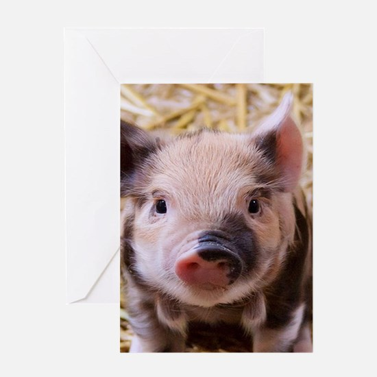 sweet little piglet 2 Greeting Cards