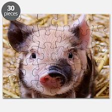 sweet little piglet 2 Puzzle