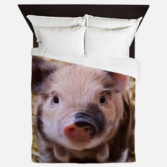 sweet little piglet 2 Queen Duvet