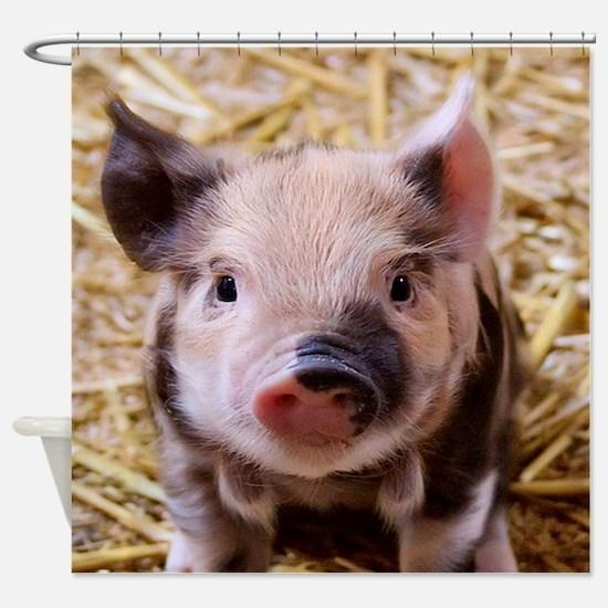sweet little piglet 2 Shower Curtain