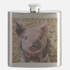 sweet little piglet 2 Flask