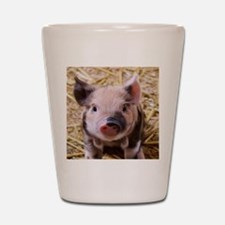 sweet little piglet 2 Shot Glass