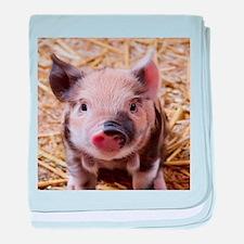 sweet little piglet 2 baby blanket