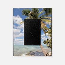 Isla Saona Picture Frame