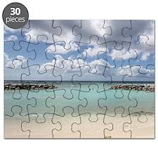 De Palm Island Puzzle