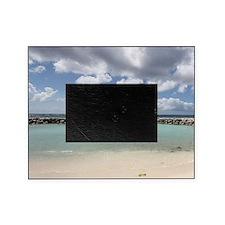 De Palm Island Picture Frame