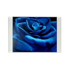 Blue Rose Magnets