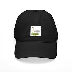Snowy Mallard Hen Black Cap