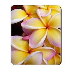 Hawaiian Plumeria Mousepad