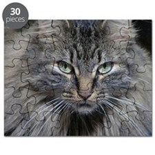 Main Coon Kitty Cat Puzzle