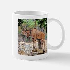 Taking It All In Mugs
