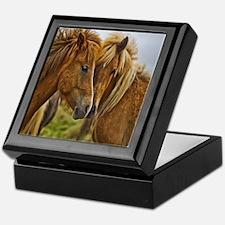 In Love Horses Keepsake Box