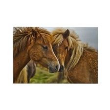 In Love Horses Magnets